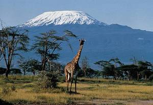 Kilimandjaro en Tanzanie