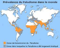 Zone endémiques du paludisme