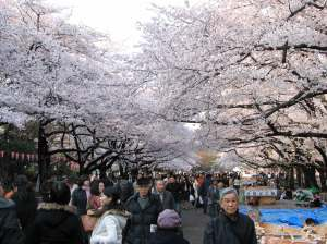 Parc Ueno à Tokyo
