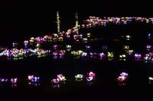 Jardin flottant